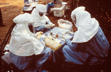 Ebola Outbreak in Democratic Republic of Congo (formerly Zaire) in 1995